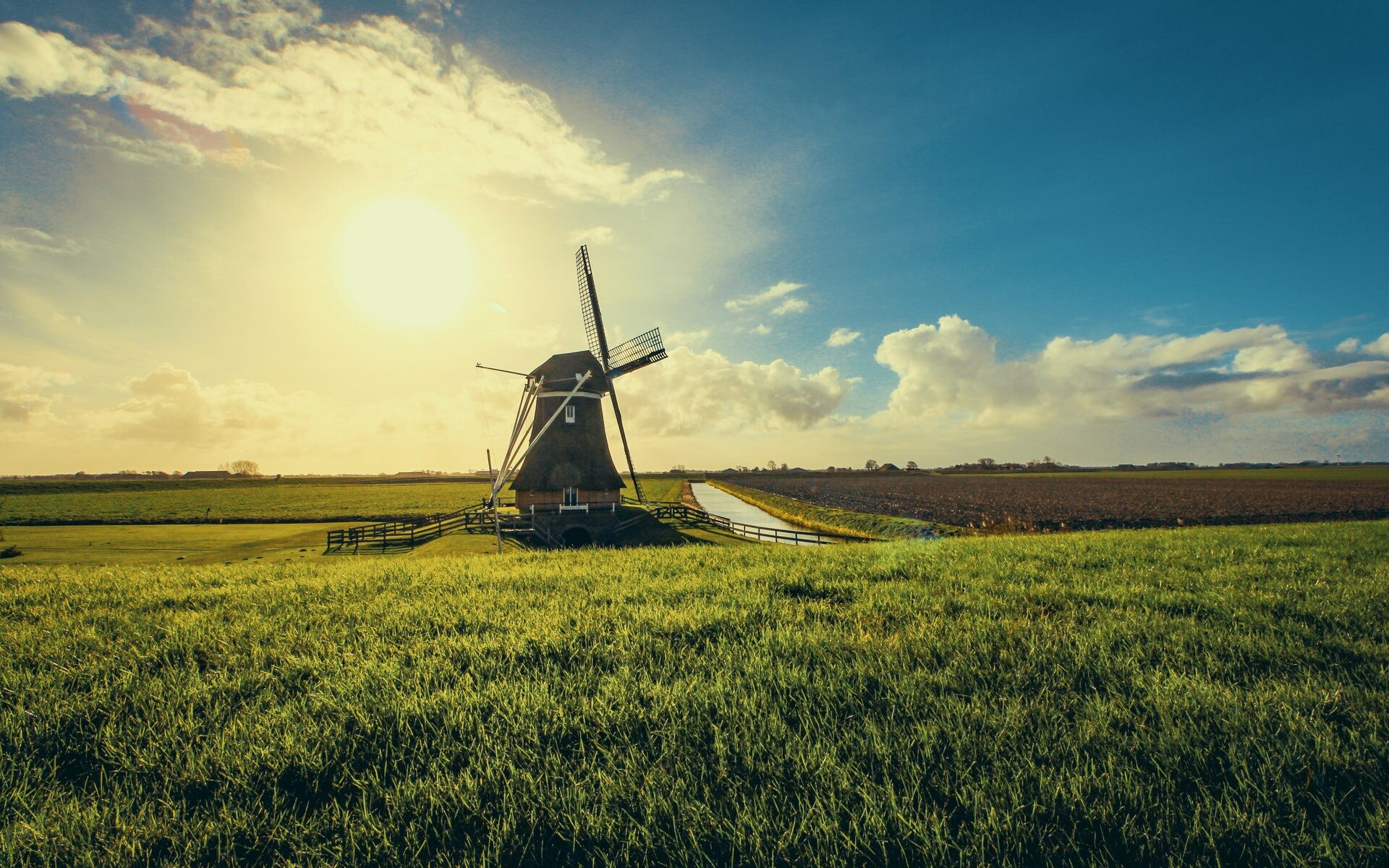Windmolen in het landschap